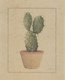 Opuntia Print by Laurence David