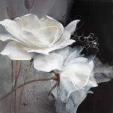 Wealth of Flowers I Plakater av Willem Haenraets