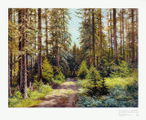 Sunny Forest Road Posters by Ernst Frommhold