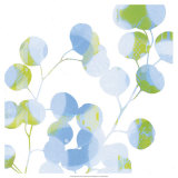 Blue Plums II Prints by Ricki Mountain