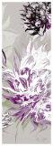 Purple Allure III Prints by Sally Scaffardi