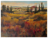 Tuscany I Prints by Tim O'toole