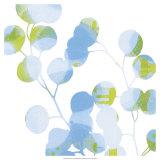 Blue Plums I Poster von Ricki Mountain