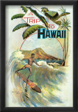 A Trip to Hawaii Print