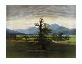 The Lonely Tree Collectable Print by Caspar David Friedrich