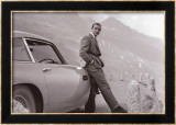 James Bond&#160;: Aston Martin Art