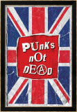 Punks Not Dead Affiches