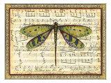 Dragonfly Harmony II Posters