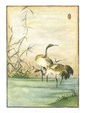 Oriental Cranes II Posters