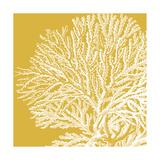 Saturated Coral I Posters af  Vision Studio
