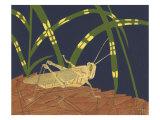 Ornamental Grasshopper I Premium Giclee Print by Nina Tenser