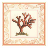 Coral with Shell Border I Giclee Print by Vision Studio 