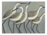Shore Birds II Giclee-tryk i høj kvalitet af Norman Wyatt Jr.