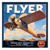 Flyer Prints by  Vision Studio