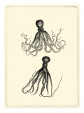 Sepia Octopus Posters