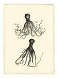 Sepia Octopus Prints