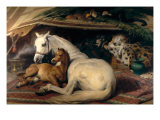 The Arab Tent, 1866 Giclee Print by Sir Edwin Landseer