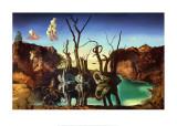 Elefantteina heijastuvat joutsenet, n. 1937 Posters tekijänä Salvador Dalí