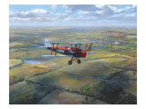 D.H. Tiger Moth Giclee Print by Roy Cross