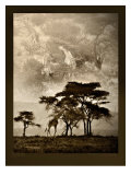 Tanzanian Landscape Giclee Print by Bobbie Goodrich