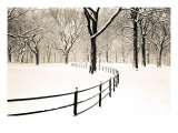 Central Park Snow Poster by Andrew Geiger