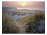 Budle, Misty Sunset Poster by Joe Cornish