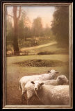 Ruthie's Sheep Poster by Barbara Kalhor