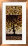 Oak Tree I Prints by Lynn Kelly