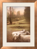 Ruthie's Sheep Art by Barbara Kalhor