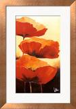 Three Red Poppies I Poster by Jettie Rosenboom