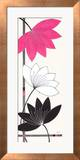 Fuchsia Lotus Blooms Prints by Alan Buckle
