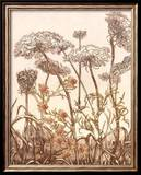 Field of Lace II Print by B. Dauman