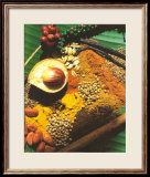 Spices Print by Bruno Morandi