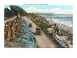 Palisades, Santa Monica, California Prints