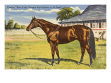 Citation, Kentucky Derby Winner Print