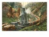 Steam Lumber Mill on Tracks Prints