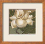 Spring Magnolia I Print by Cooper 