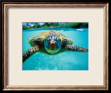 Honu, Turtle Affiches par Kirk Lee Aeder