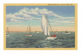 Sailing off Cape Cod, Mass. Prints