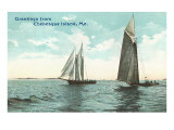 Sailboats, Chebeague Island, Maine Prints