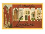 Greetings from Monroe, Louisiana Láminas