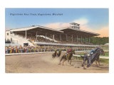 Hagerstown Race Track, Hagerstown, Maryland Print
