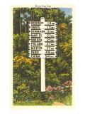 Maine Sign Post Art Print
