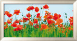 Poppy Fields Prints by Jan Lens