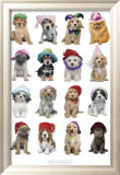 Keith Kimberlin - Puppies in Hats Plakát
