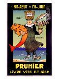Falize - Prunier Digitálně vytištěná reprodukce