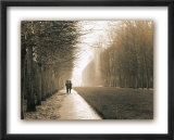 Park at Versailles Prints by Connie Wellnitz