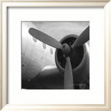 Vintage Flight III Prints by Janet Van Arsdale