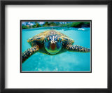 Honu, Turtle Affiche par Kirk Lee Aeder