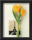 Tulipes et carte postale de la Tour Eiffel Affiches par Dorothy Gaubert Pyle